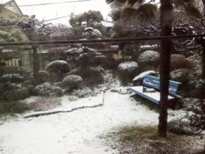 2015年1月30日初雪1