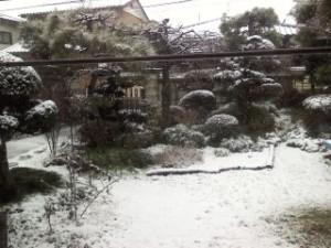 2015年1月30日初雪2